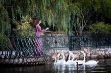 Фотосесия Бургас цени/Фотограф Бургас